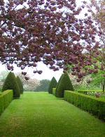 Spring at Hinton Ampner